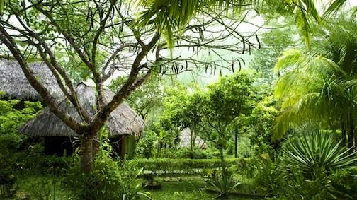 Belize's GAIA Riverlodge Set to Open