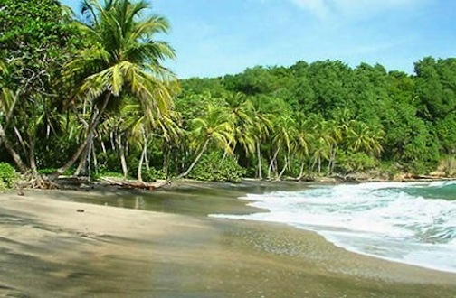 The Top Caribbean Black Sand Beaches