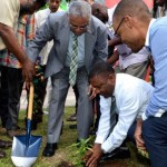 Jamaica Just Planted Its First Legal Marijuana Plant