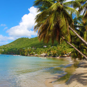 saint lucia tourism reopen